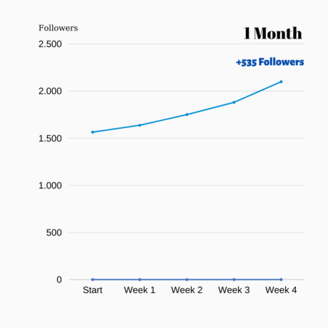 twitter growth service report